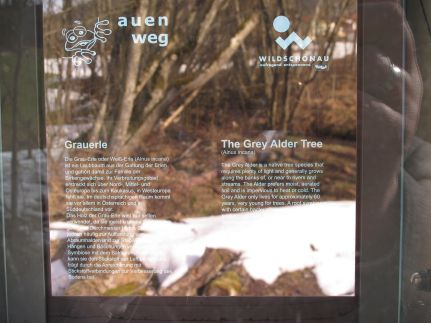 Detailbild: Vis auenweg02